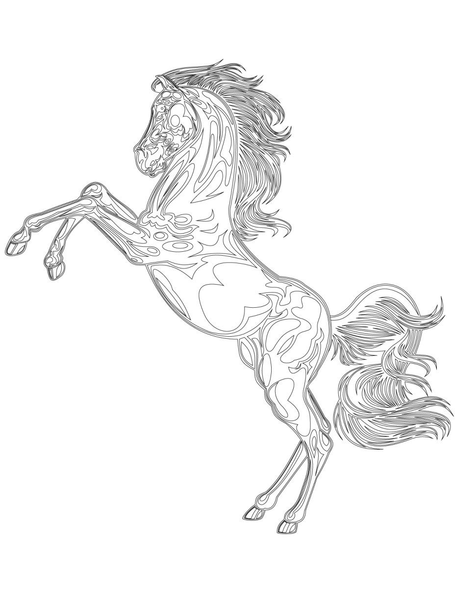 wild mustang coloring pages running mustang coloring page free printable coloring pages wild mustang pages coloring