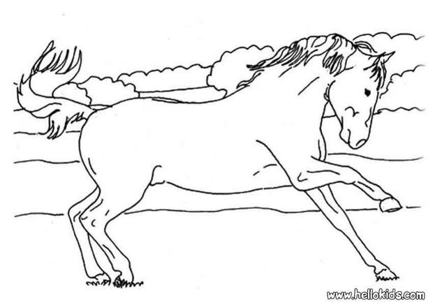 wild mustang coloring pages wild mustang coloring pages wild mustang pages coloring