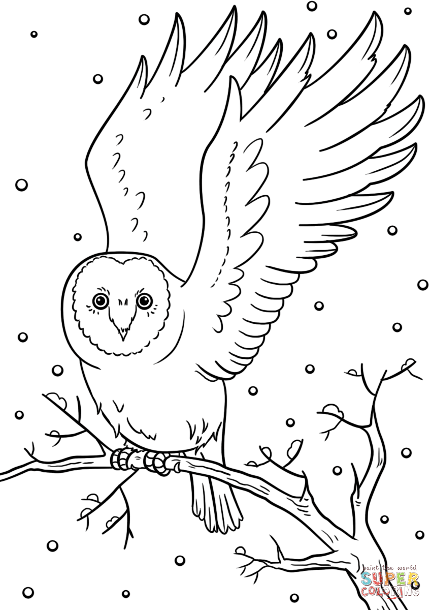 winter animal coloring pages free printable winter coloring pages coloring pages winter animal