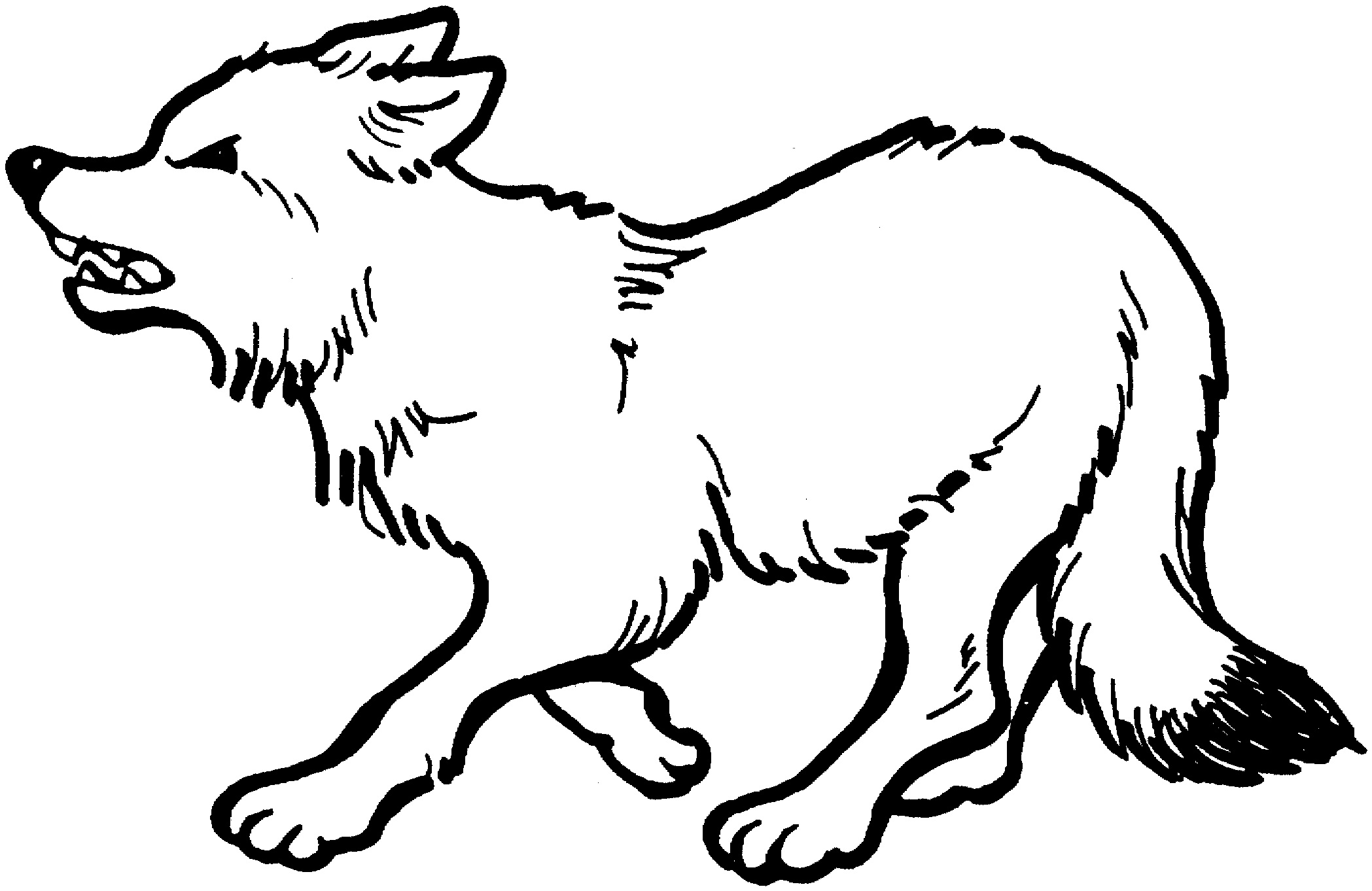 wolf pictures for kids free printable wolf coloring pages for kids for pictures wolf kids