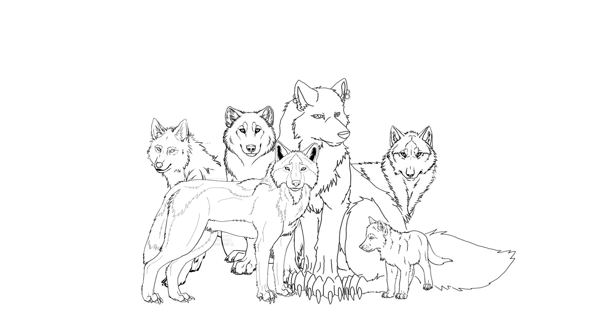 wolf pictures for kids free printable wolf coloring pages for kids kids wolf pictures for