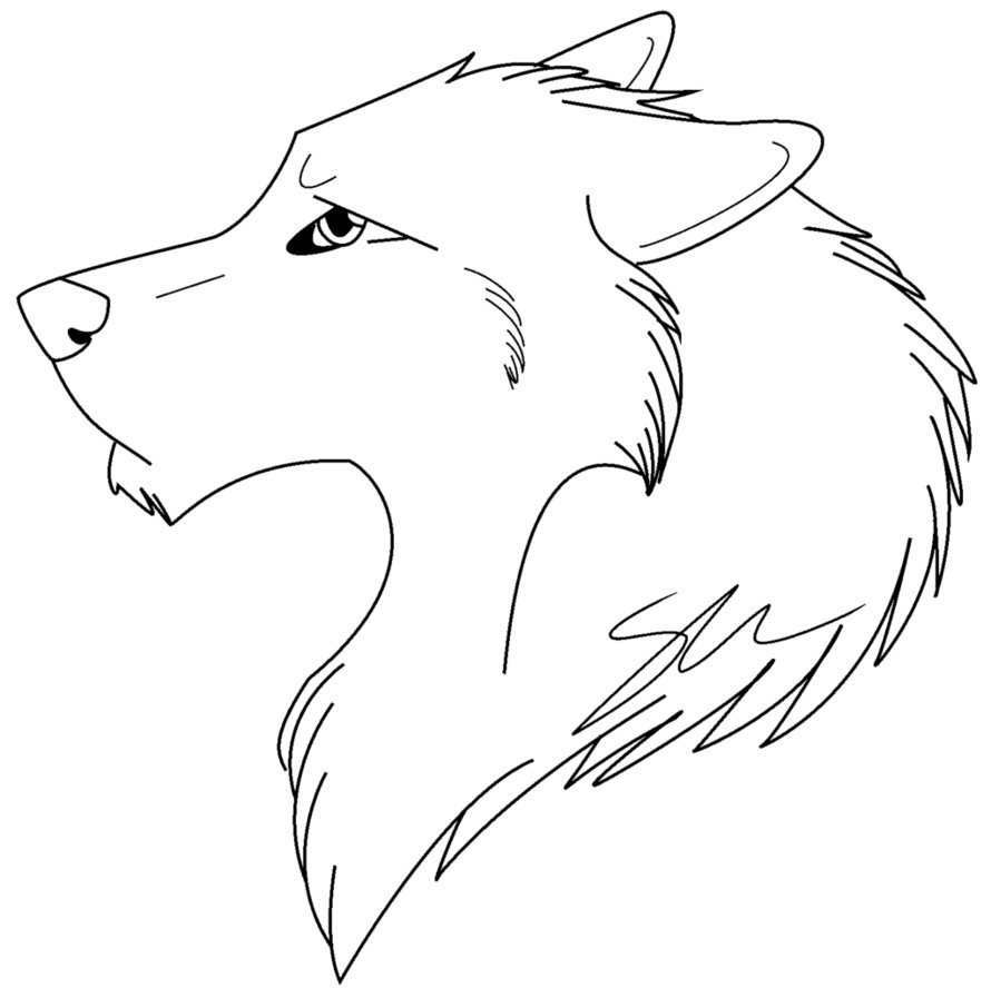 wolf pictures for kids realistic wolf coloring pages free printable wolf for kids wolf pictures