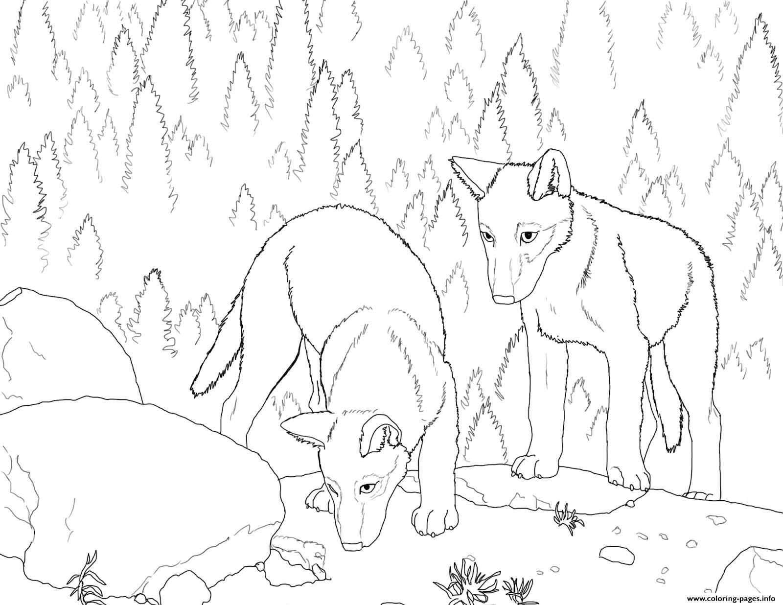 wolf puppy coloring pages 1000 images about embroidery on pinterest wolf puppies wolf pages puppy coloring