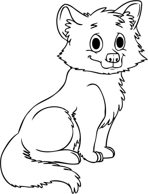 wolf puppy coloring pages wolf cute baby wolf coloring page cute animal videos wolf pages coloring puppy
