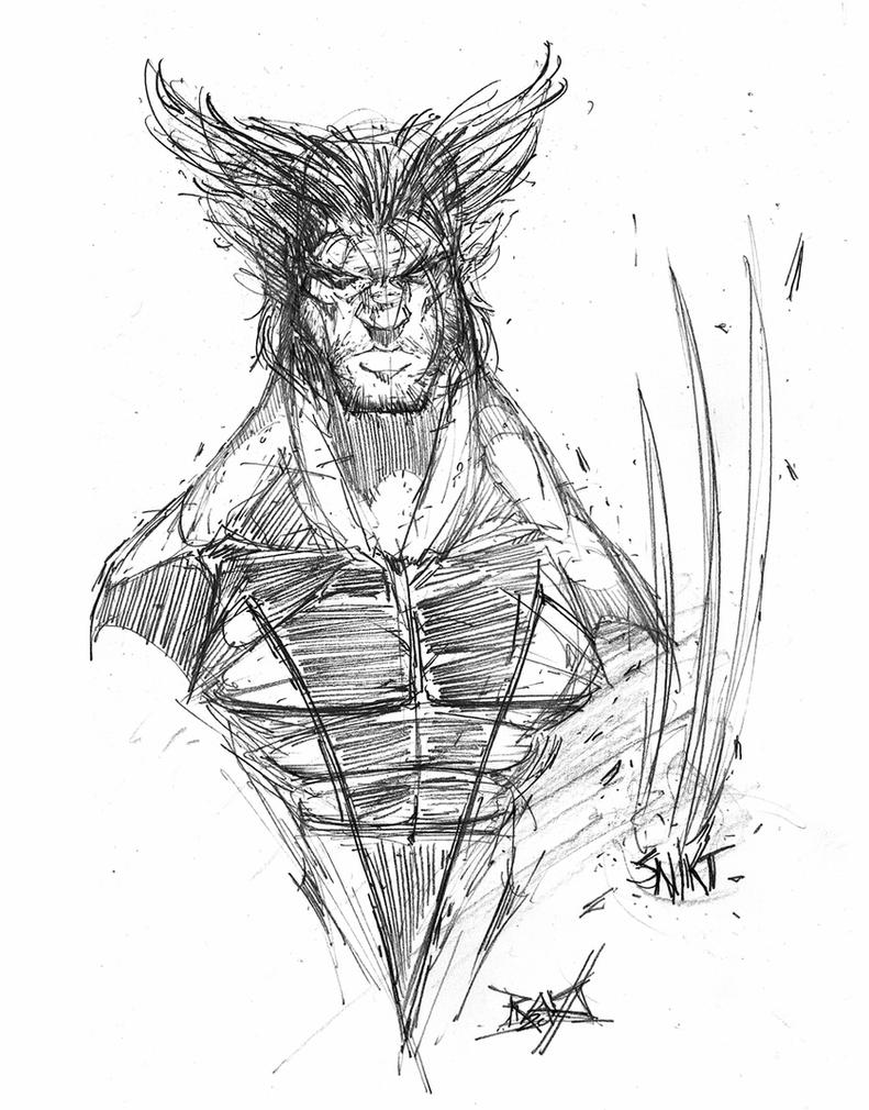 wolverine animal drawing 30 trends ideas wolverine animal face drawing creative drawing animal wolverine