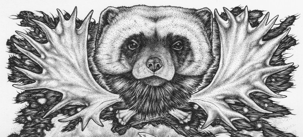wolverine animal drawing how to draw a wolverine step by step easy animals 2 draw wolverine drawing animal