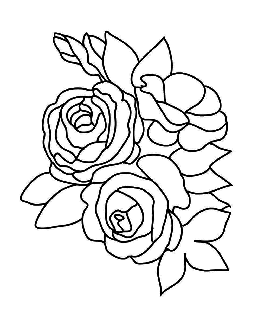 a coloring page of a rose flower coloring pages a rose page a of coloring