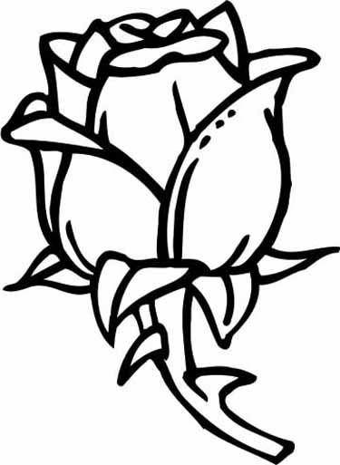 a coloring page of a rose free printable roses coloring pages for kids a rose of coloring page a 1 1