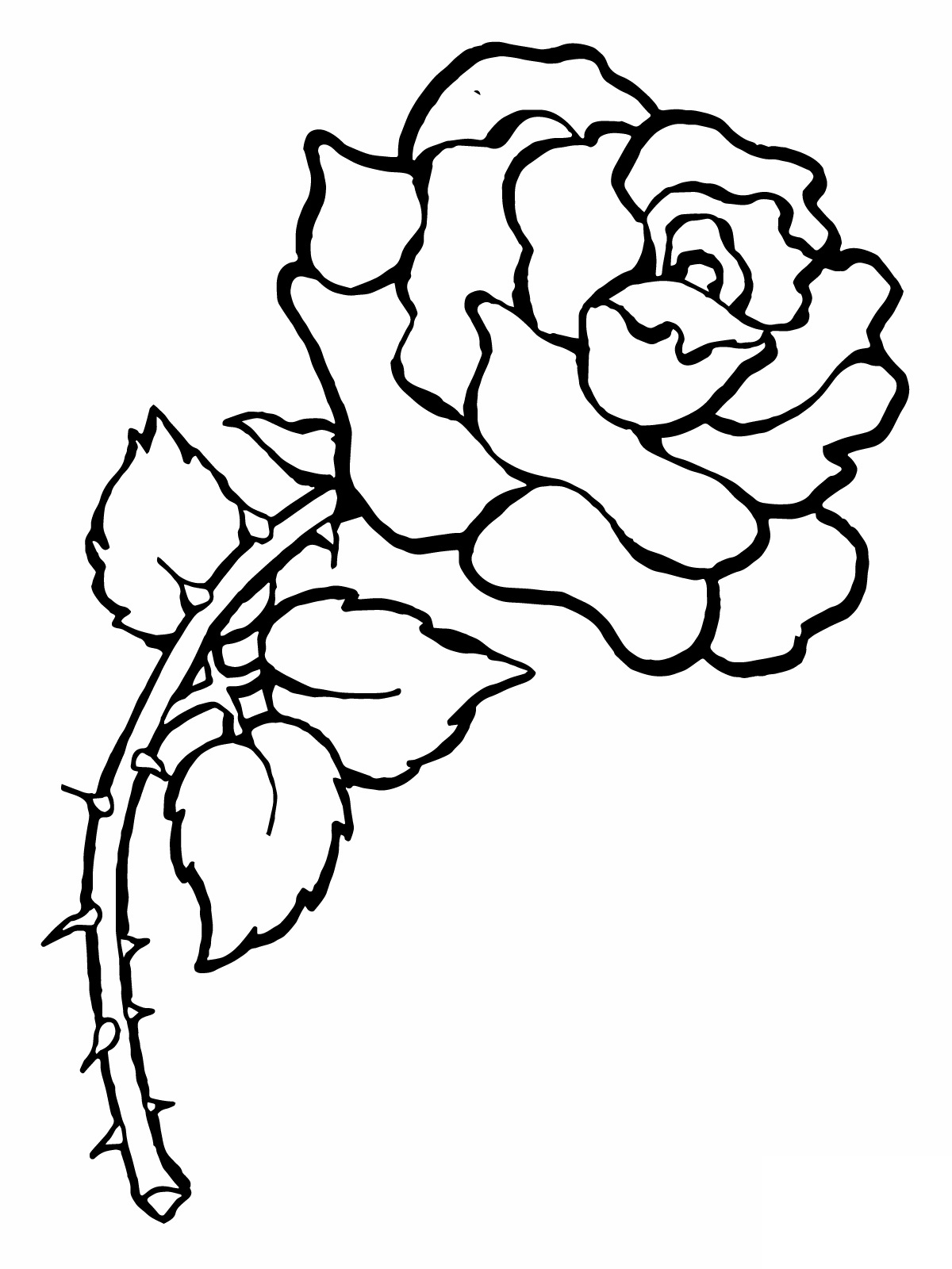 a coloring page of a rose rosecoloringpage 01 of a rose a page coloring