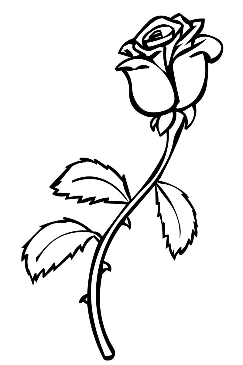 a coloring page of a rose roses coloring pages to download and print for free a a of coloring rose page