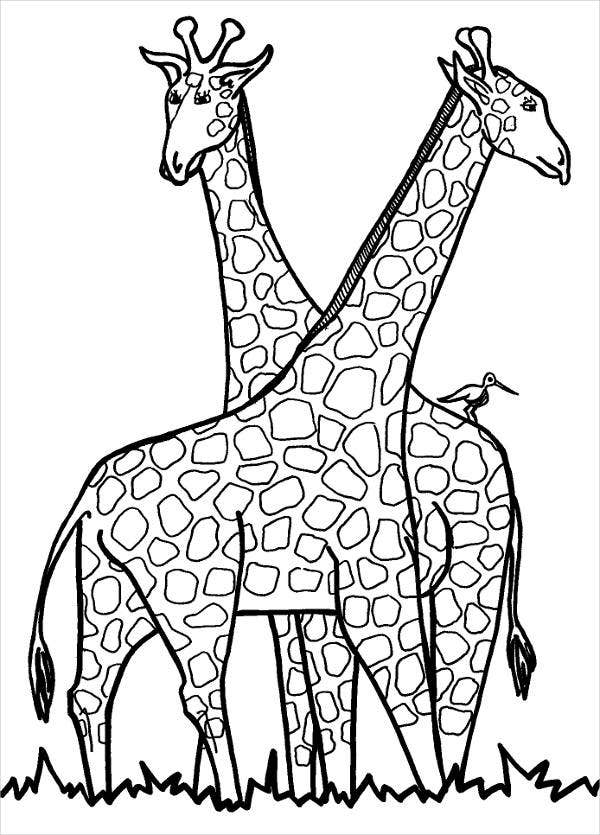 a picture to color 9 giraffe coloring pages free psd pdf jpg format a picture color to