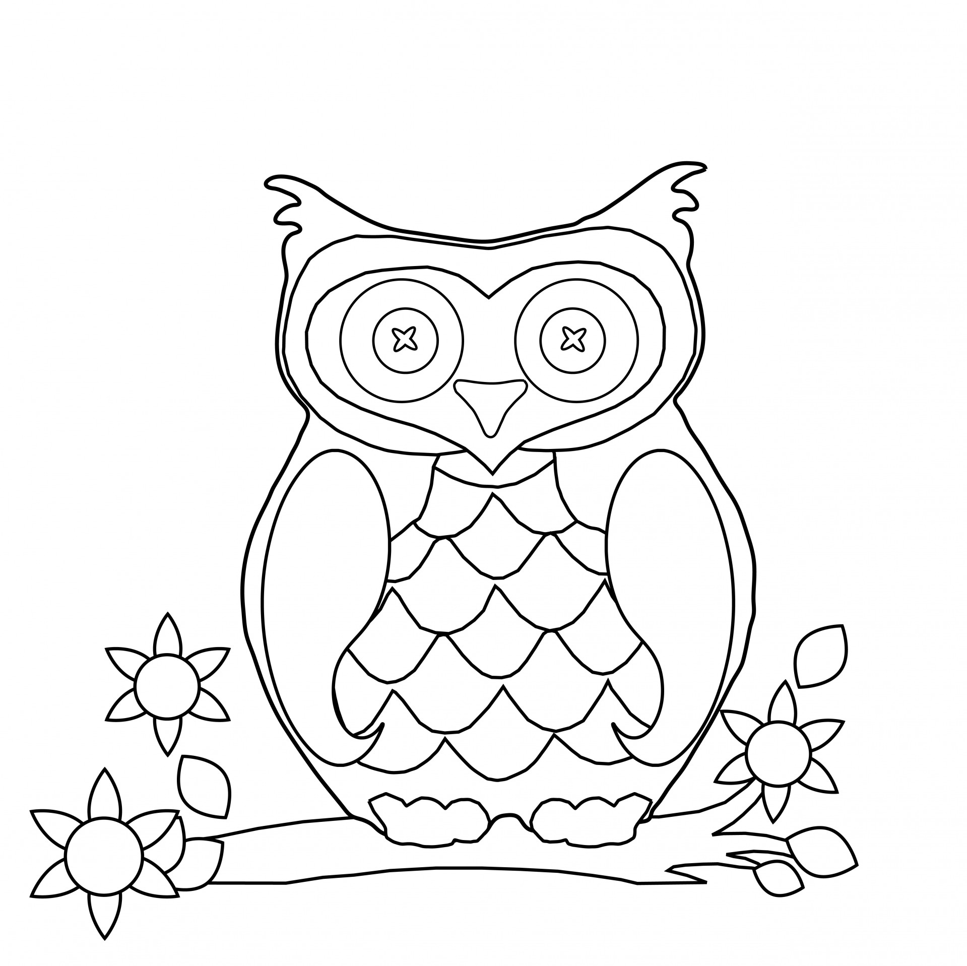 a picture to color owl coloring pages for adults free detailed owl coloring a picture color to