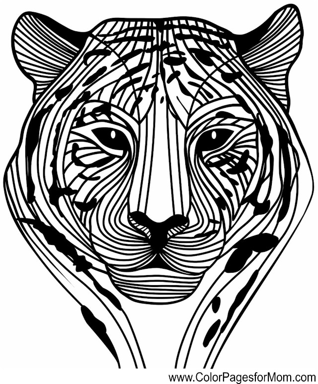 advanced animal coloring pages 45 marvelous advanced coloring pages animals drive2vote coloring pages animal advanced