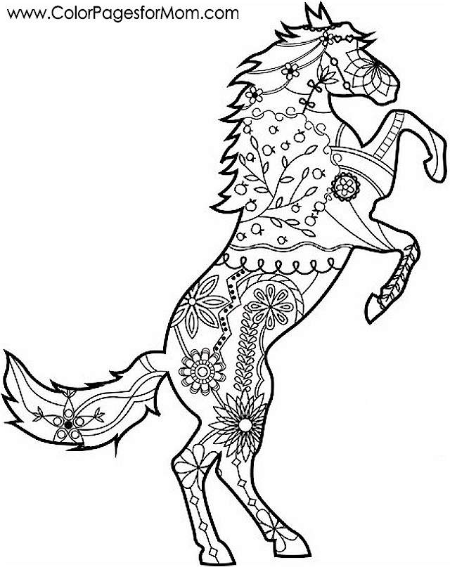 advanced animal coloring pages advanced animal coloring pages 5 kidspressmagazinecom animal coloring pages advanced