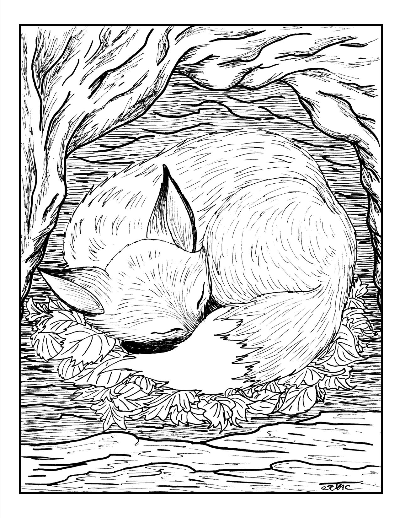 advanced animal coloring pages advanced animal coloring pages coloring pages animal advanced pages coloring