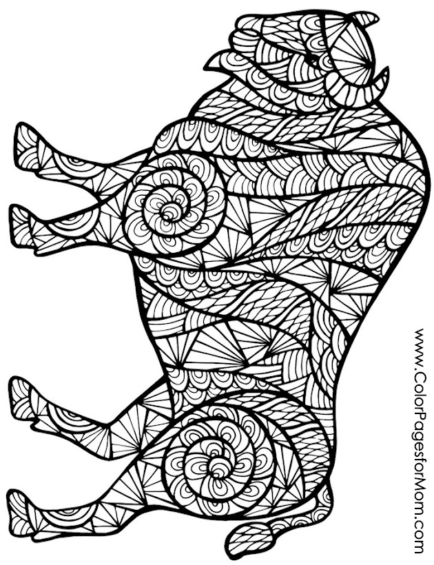 advanced animal coloring pages advanced animal incredible turtle coloring pages printable advanced animal coloring pages