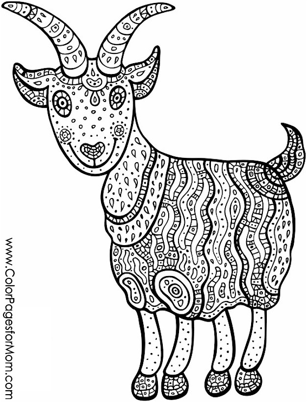 advanced animal coloring pages advanced bear coloring page kidspressmagazinecom advanced pages coloring animal