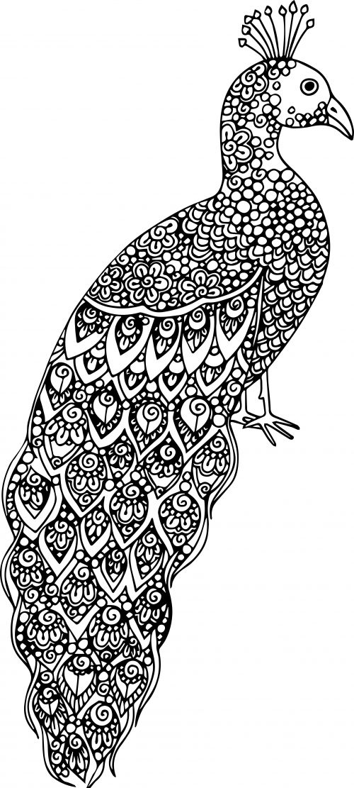 advanced animal coloring pages animals 112 advanced coloring page coloring animal advanced pages