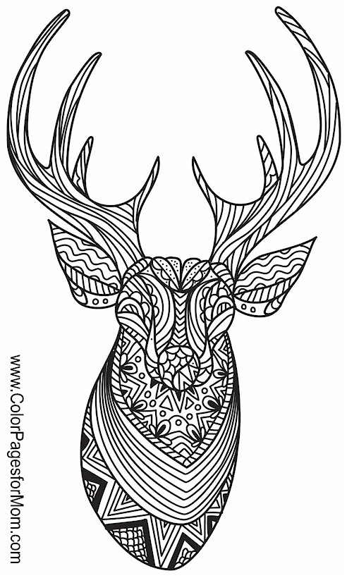 advanced animal coloring pages animals 160 advanced coloring pages advanced coloring animal pages
