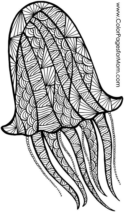 advanced animal coloring pages animals 39 advanced coloring page animal pages advanced coloring