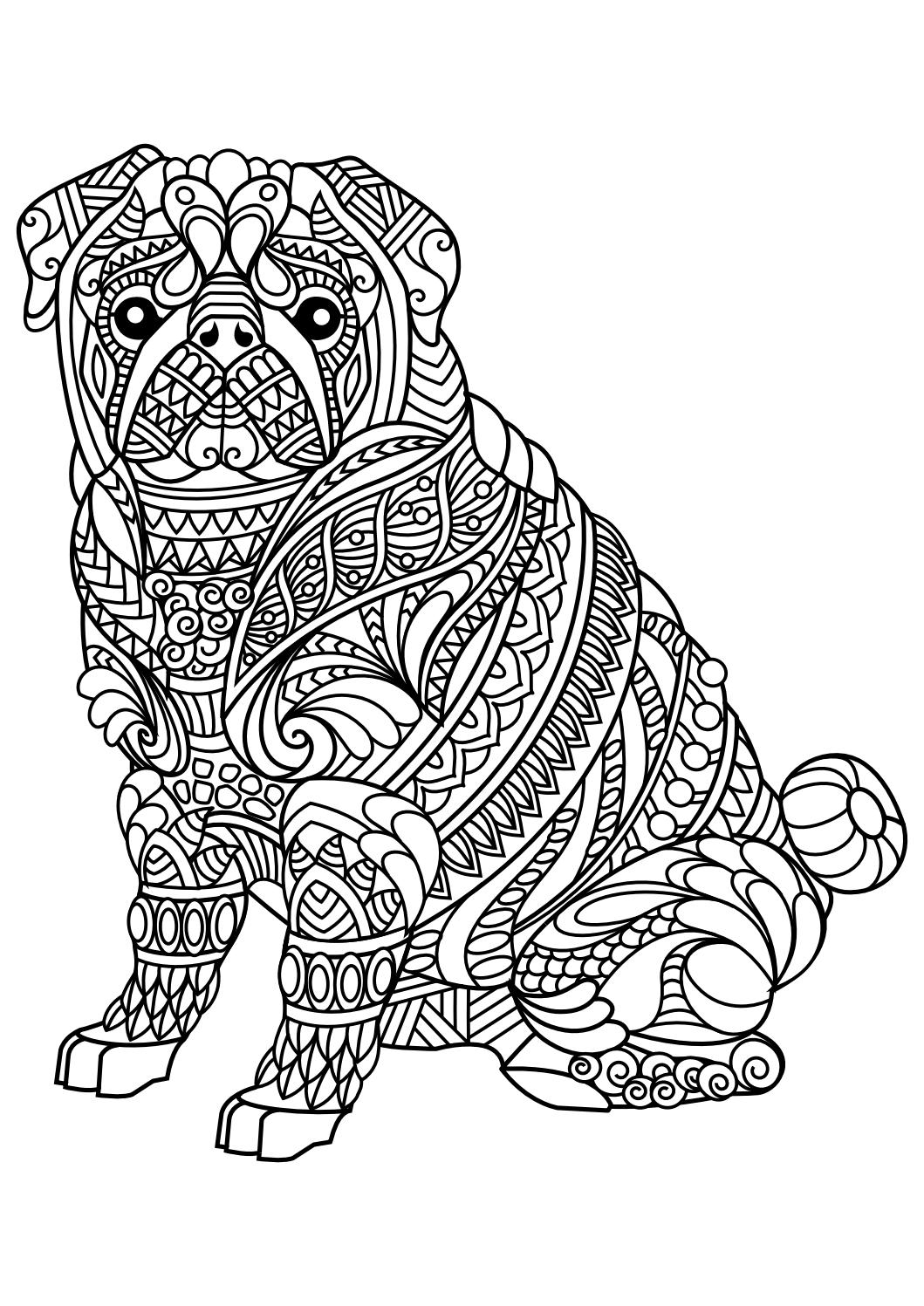 advanced animal coloring pages inspirant coloriage pour adulte animaux meilleur coloring advanced animal pages