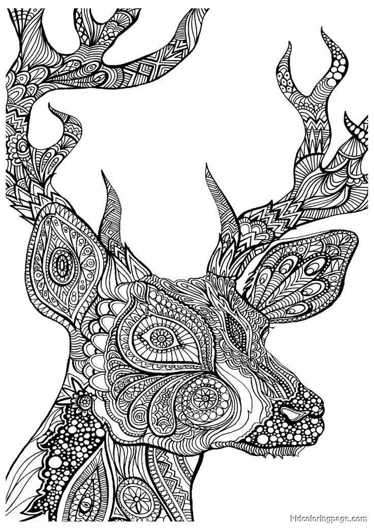 advanced coloring pages colouringmazesdot dotpages2enjoy advanced coloring pages