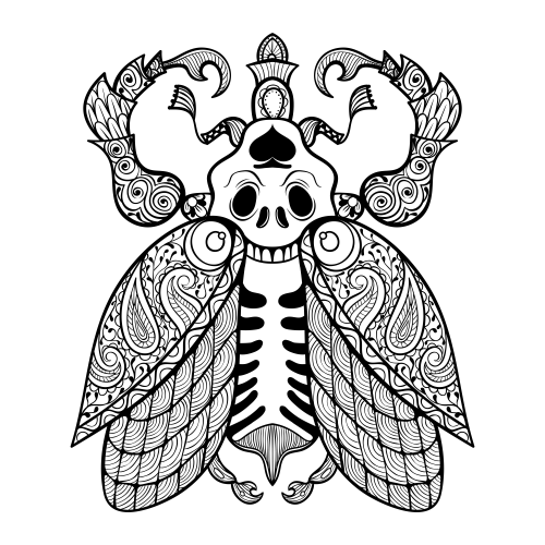 advanced coloring pages owl coloring pages for adults free detailed owl coloring pages coloring advanced
