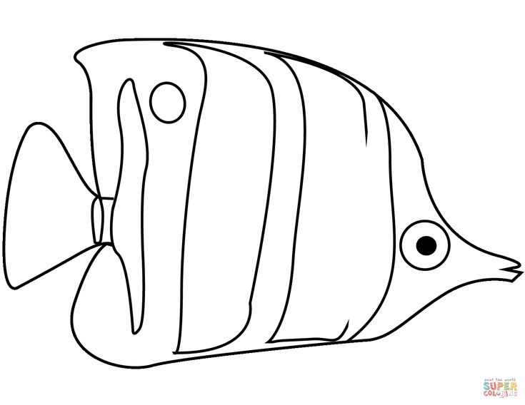 angel fish coloring page angelfish coloring page free printable coloring pages in coloring fish angel page