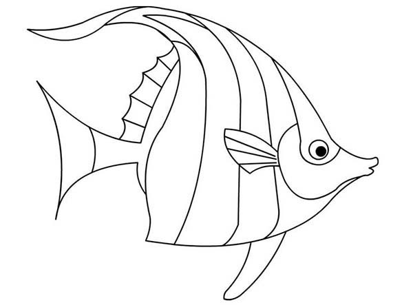 angel fish coloring page angelfish coloring page pages sketch coloring page coloring fish angel page