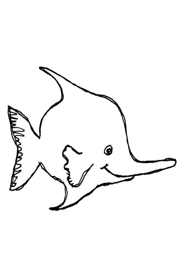 angel fish coloring page long nosed angel fish coloring page coloring sky fish coloring page angel