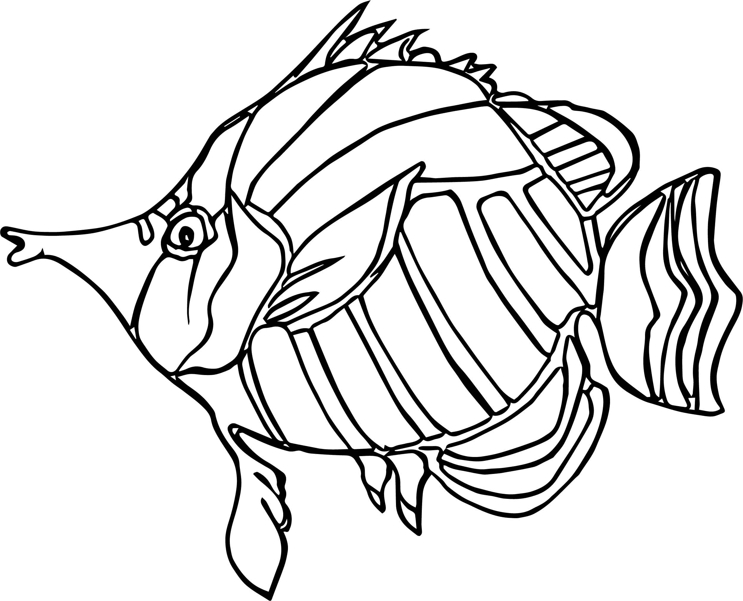 angel fish coloring page nice coloring pages at getcoloringscom free printable coloring page fish angel