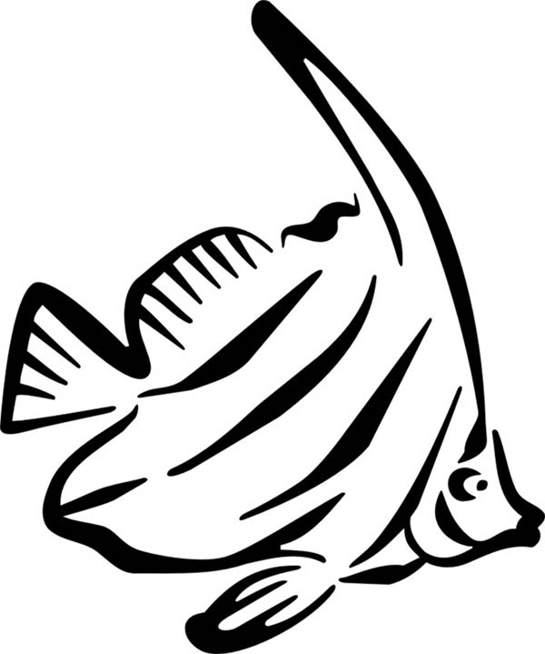 angel fish coloring page picture of angel fish coloring page coloring sky angel page coloring fish