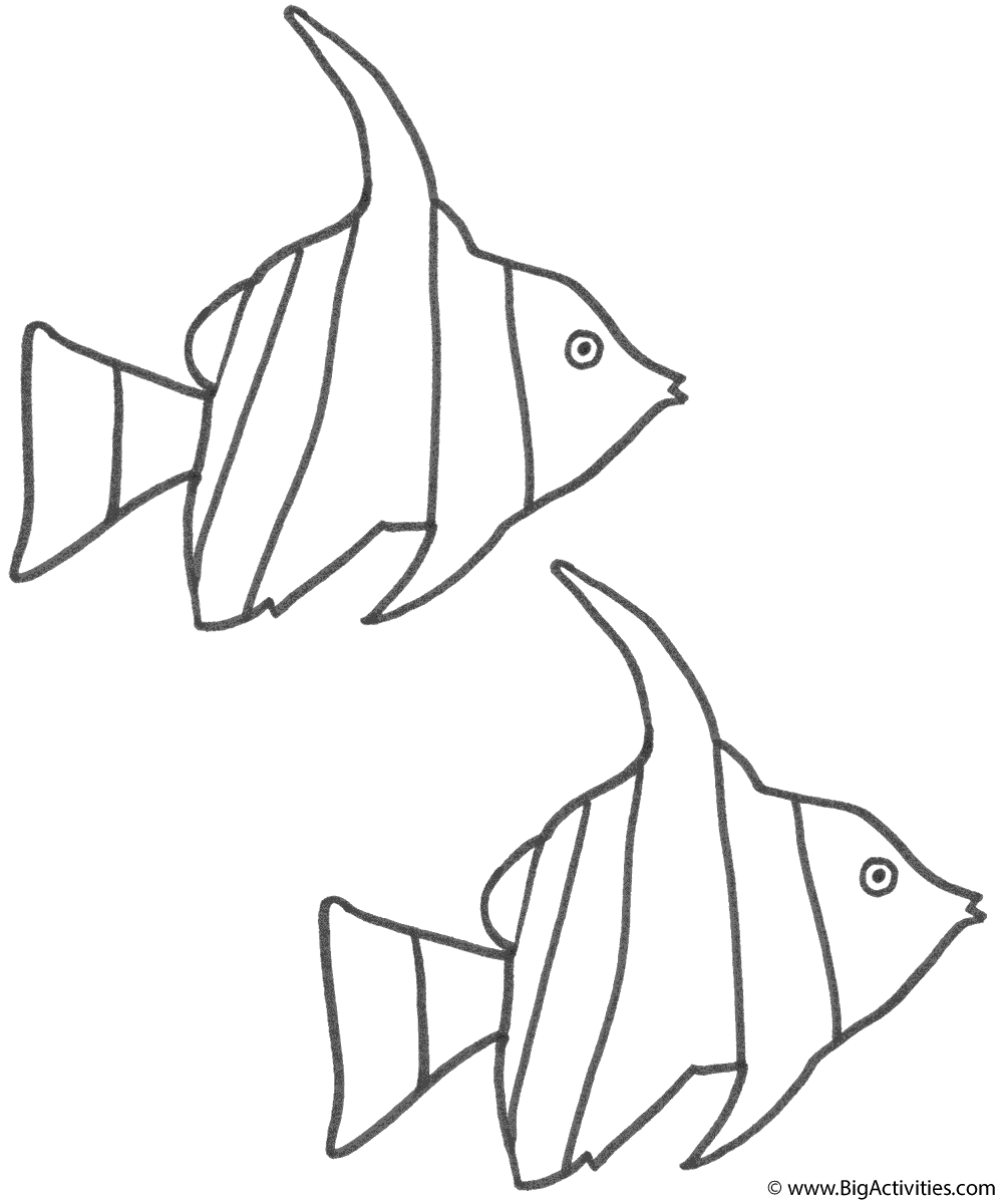 angel fish coloring page two angel fish coloring page fish page fish angel coloring
