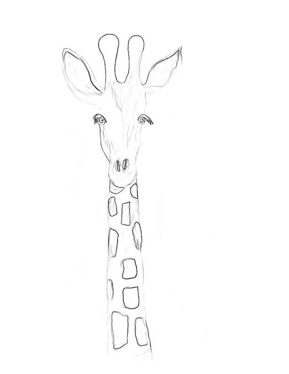 animal coloring pages giraffe coloring page giraffe animals coloring pages 18 animal pages giraffe coloring