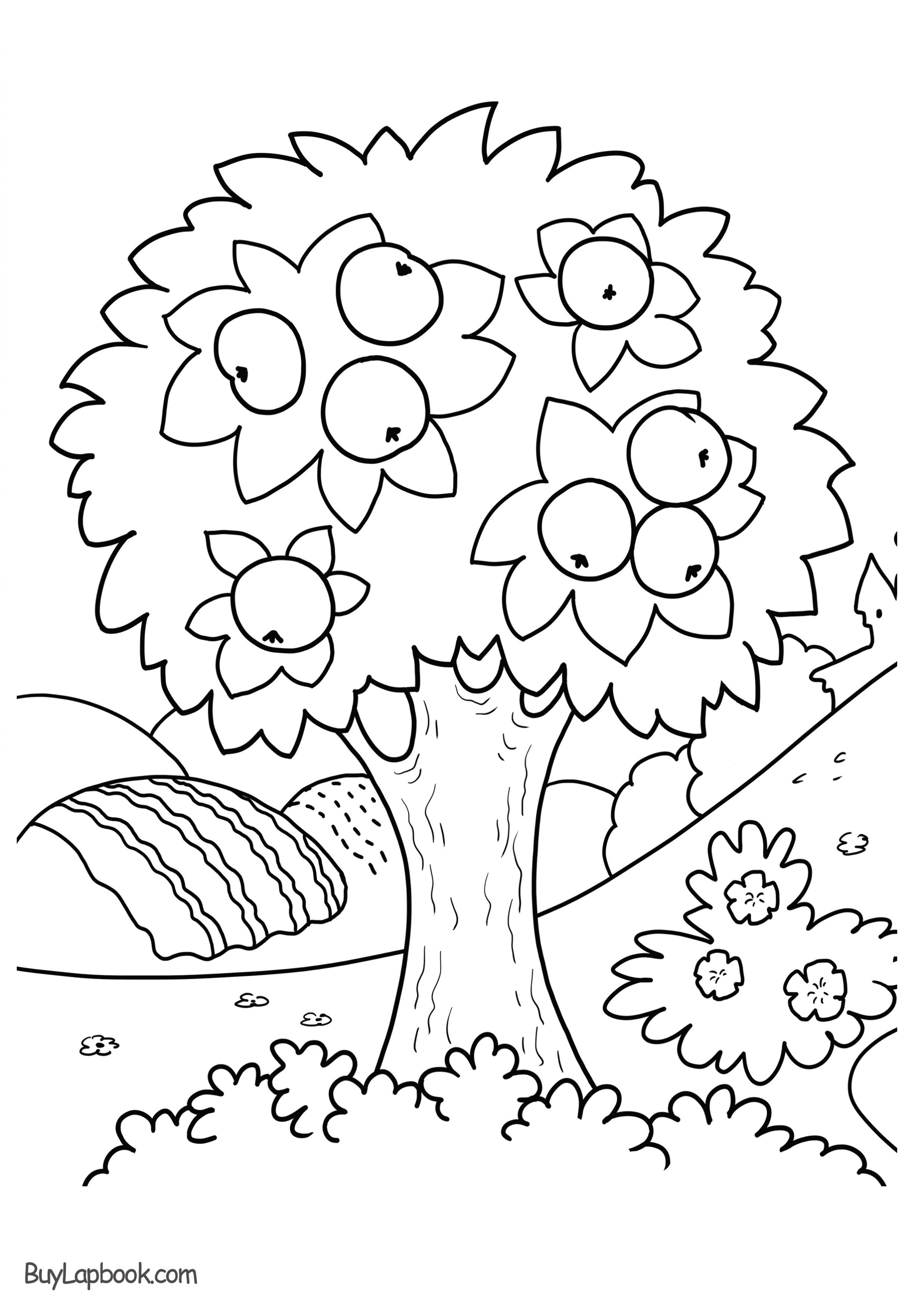 apple tree coloring sheet fig tree coloring page at getcoloringscom free coloring sheet apple tree