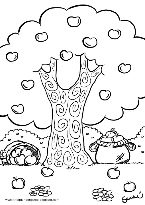 apple tree coloring sheet the quandong tree colouring pages coloring sheet apple tree