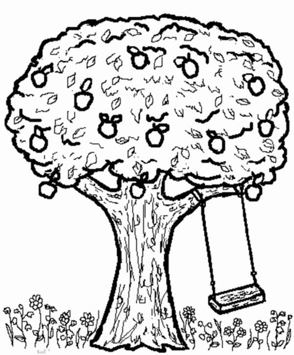 apple tree coloring sheet too much apple tree coloring page coloring sheet apple tree