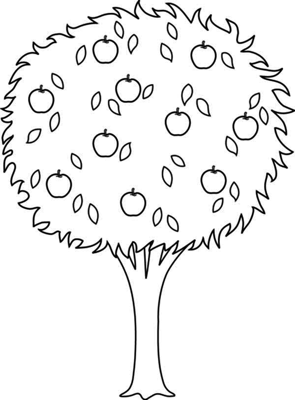 apple tree pictures to color apple tree coloring page free autumn coloring pages tree color to pictures apple