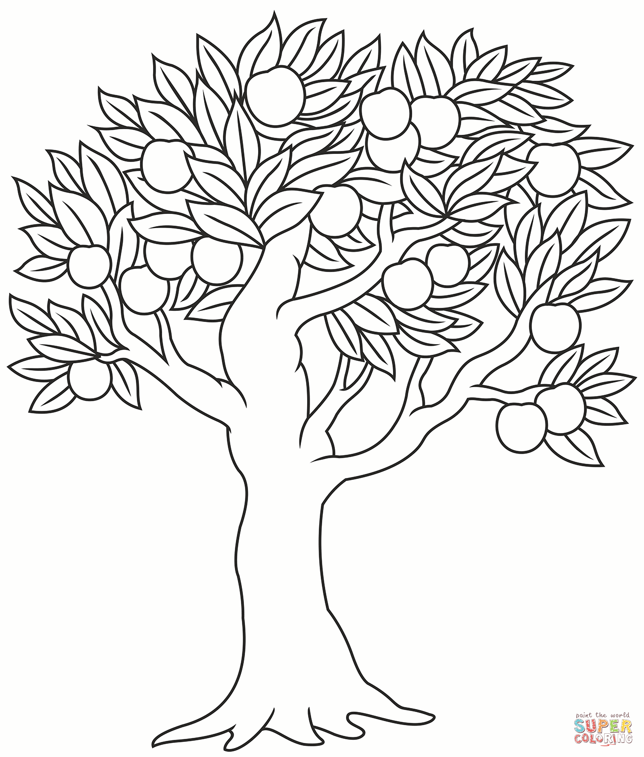 apple tree pictures to color apple tree coloring page free printable coloring pages apple tree pictures to color