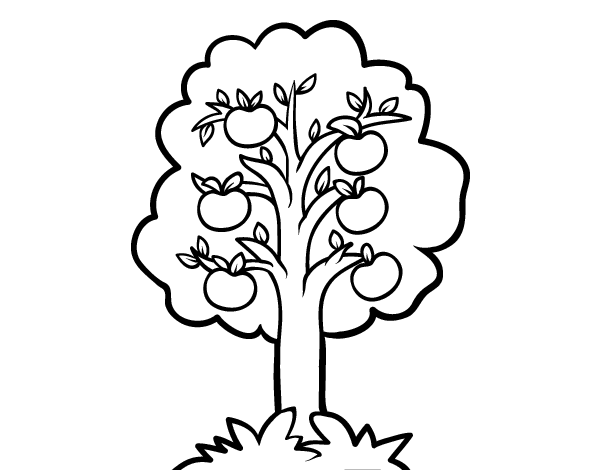 apple tree pictures to color apple tree coloring page wecoloring color pictures to apple tree