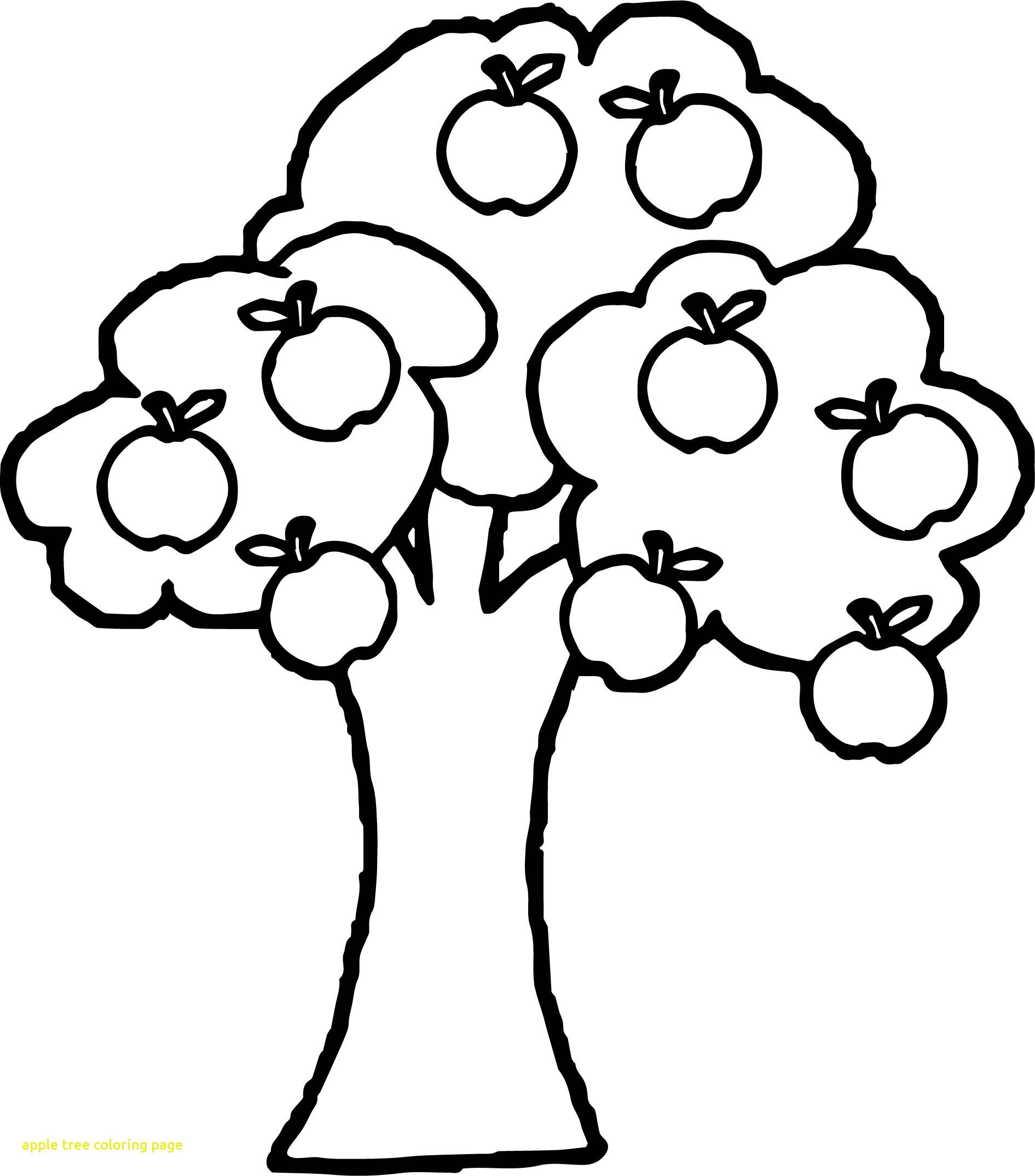 apple tree pictures to color apple tree coloring pages tree coloring pages tree color to pictures apple