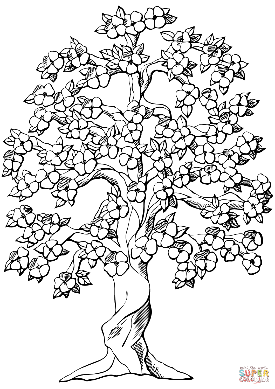 apple tree pictures to color flowering apple tree coloring page free printable color to tree pictures apple