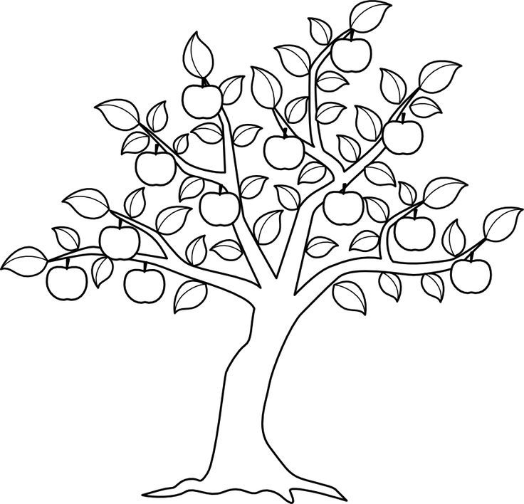 apple tree pictures to color free printable apple coloring pages for kids tree color apple pictures tree to