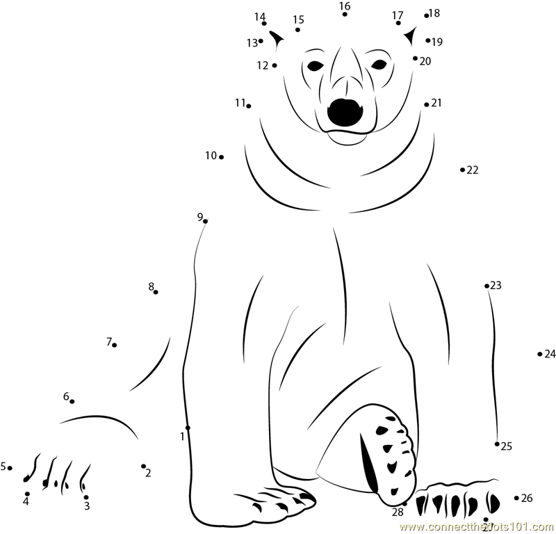 arctic animals coloring pages for preschoolers 12 best images of polar animal worksheets arctic animals preschoolers pages animals arctic coloring for