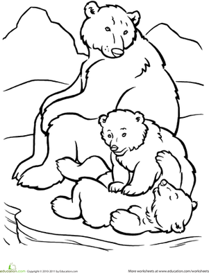 arctic animals coloring pages for preschoolers arctic animals p is for penguin arctic animals artic arctic animals for coloring pages preschoolers