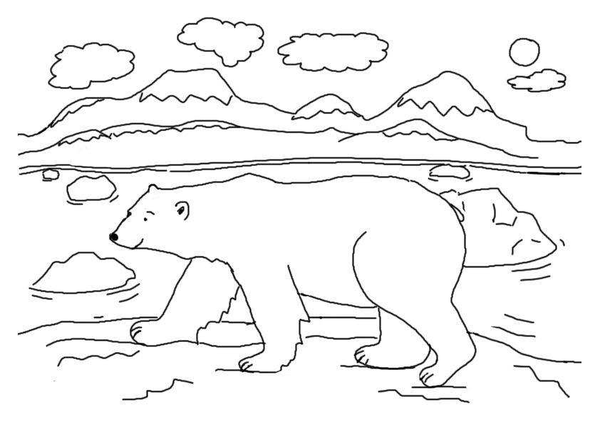 arctic animals coloring pages for preschoolers free printable polar bear coloring pages for kids pages preschoolers for arctic animals coloring