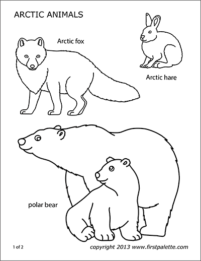 arctic animals coloring pages for preschoolers polar animals coloring page and printables for standing pages animals preschoolers arctic coloring for