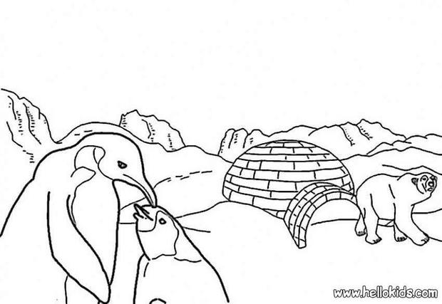 arctic animals coloring pages for preschoolers winter animals coloring pages coloring pages of winter arctic preschoolers coloring pages for animals