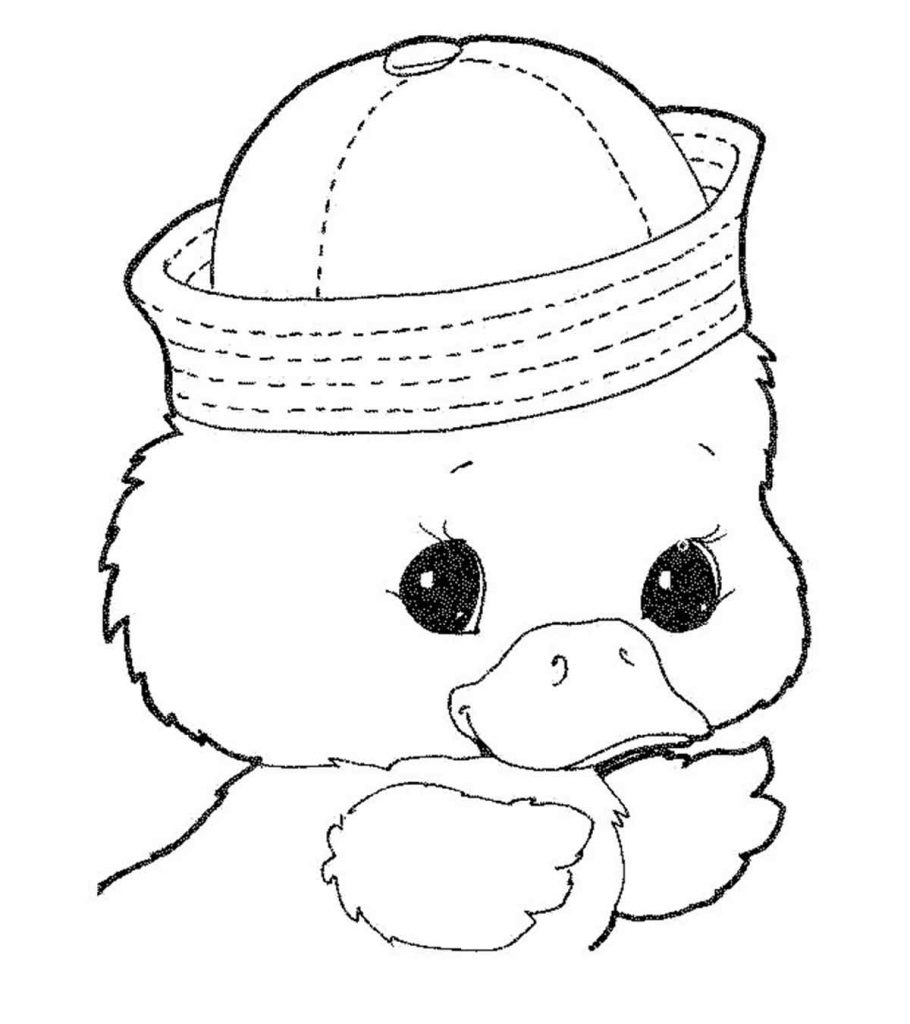 baby duck coloring pages collection of duck coloring pages for kids duck baby coloring pages