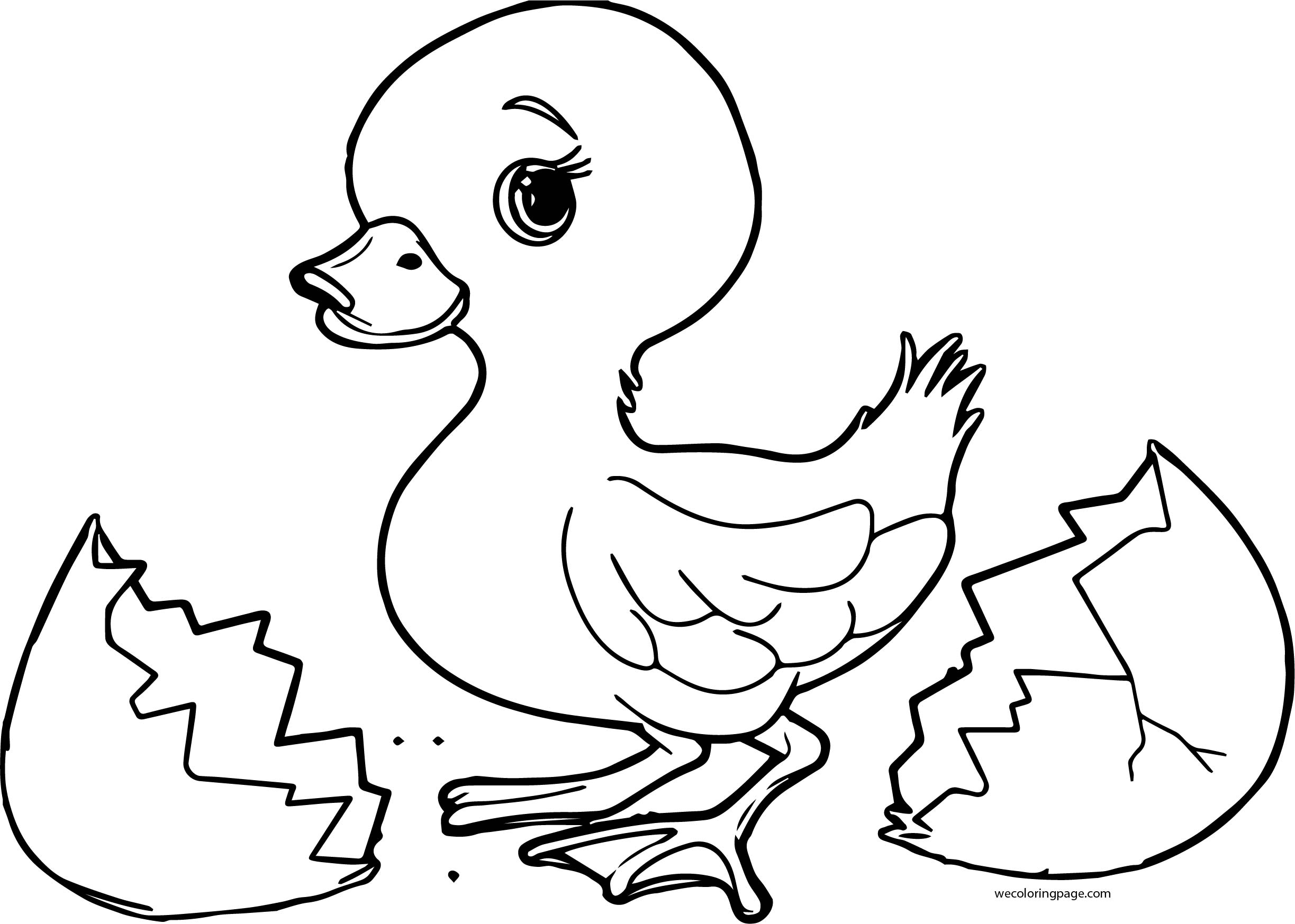 baby duck coloring pages cute baby duck wear a hat coloring pages coloring pages pages coloring baby duck